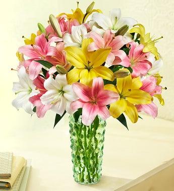 Spring Lilies, 50 Blooms