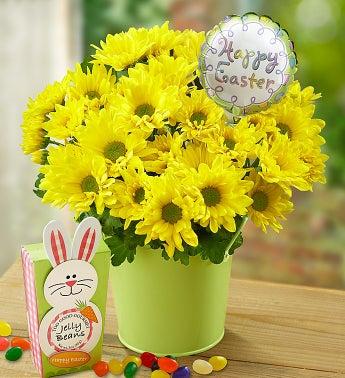 Easter Mum
