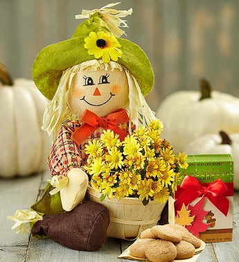 Fall Country Mum with Cookies