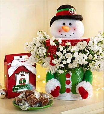 Frosty the Snow Plant - Frosty the Snow Plant with Chocolate