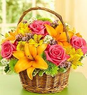 Basket Arrangement