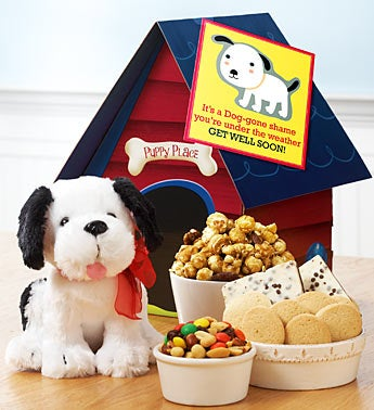 Get Well Soon Cuddly Puppy & Snack Set