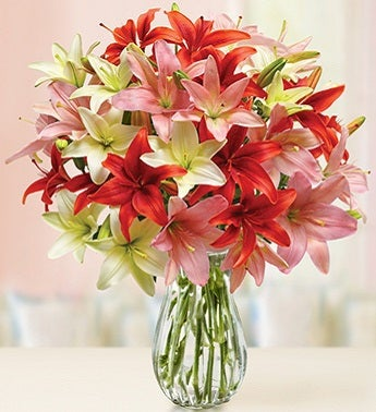 Assorted Lilies in a Vase