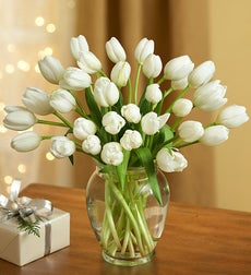 Winter Snowflake Tulips, 30 for $30 + Green Vase - 30 Stems with Free Clear Vase