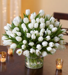 Winter Snowflake Tulips, 30 for $30 + Green Vase - 60 Stems with Clear Vase