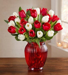 Jolly Holiday Tulips, 30 Stems - with Red Vase