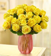 Sunshine Roses, 12-24 Stems