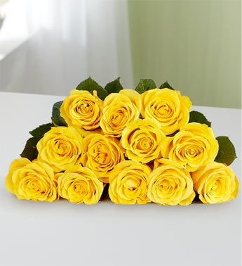 The meanings of yellow gold roses from roseforlove the wealth of meaning in a yellow rose lies in its delicate shade of sunny yellow a color of richness warmth and joy mightylinksfo