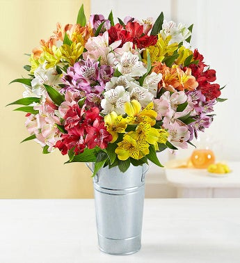 Peruvian Lilies - 100 Blooms with French Flower Pail - 1-...