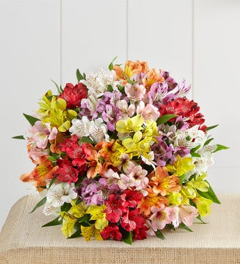 Peruvian Lilies - 100 Blooms Bouquet Only - 1-800-Flowers