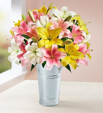 Sweet Spring Lilies - 14 Stems with French Flower Pail - 1-800-Flowers