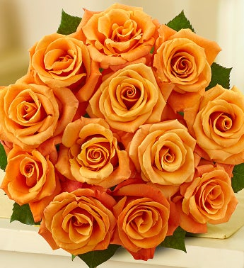 The meanings of orange roses from for The meaning of orange roses