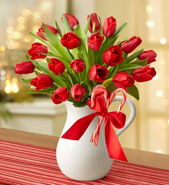 Peppermint Pitcher of Tulips?