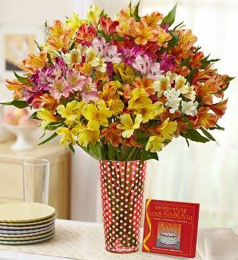 Birthday Gemstone Peruvian Lilies, 50-100 Blooms