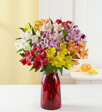Peruvian Lilies, 50-100 Blooms - 50 Blooms with Red Vase ...