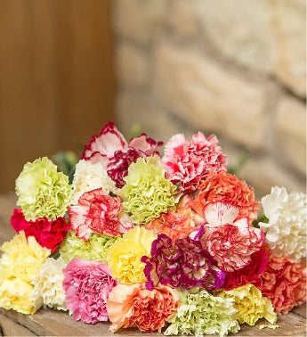Just Carnations