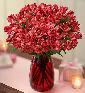 Valentine's Day Peruvian Lilies - 100 Blooms with Red Vase