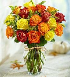Rose Elegance? Premium Long Stem Autumn Roses