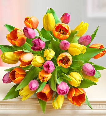 30 Assorted Tulips Bouquet Only