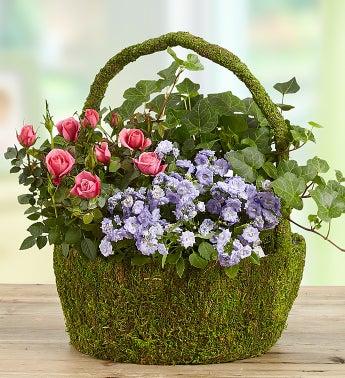 Blooming Moss Garden