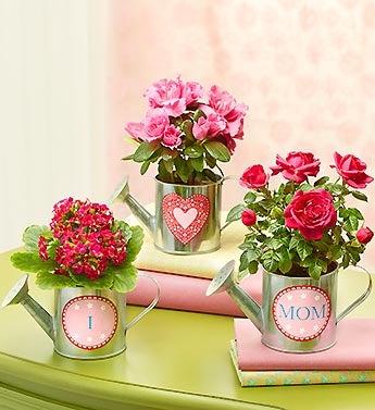I Heart Mom Gift Basket