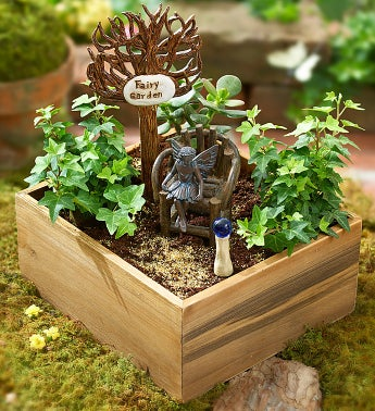 Miniature Fairy Garden Kit