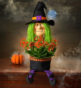 Best Halloween Flower Arrangements- Bewitching Halloween Plant