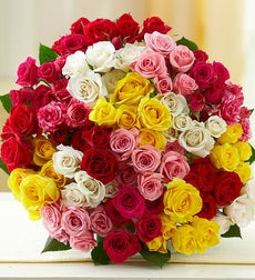 50-100 Blooms of Assorted Spray Roses - 100 Blooms Bouquet Only
