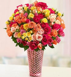 50-100 Blooms of Assorted Spray Roses - 100 Blooms with Pink Polka Dot Vase