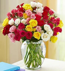 50-100 Blooms of Assorted Spray Roses - 100 Blooms with Clear Vase