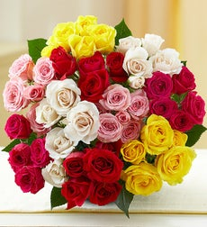 50-100 Blooms of Assorted Spray Roses
