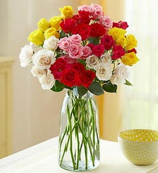 50-100 Blooms of Assorted Spray Roses - 50 Blooms with Clear Vase