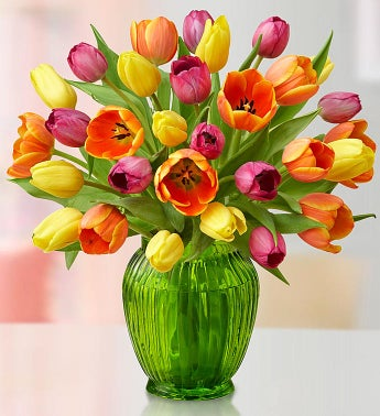 Assorted Tulips, Buy 15, Get 15 Free