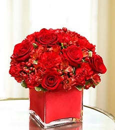 Colors of Love - Red - Medium