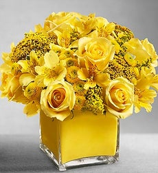 Colors of Love - Yellow - Large