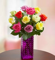 One Dozen Assorted Roses + Free Premium Vase