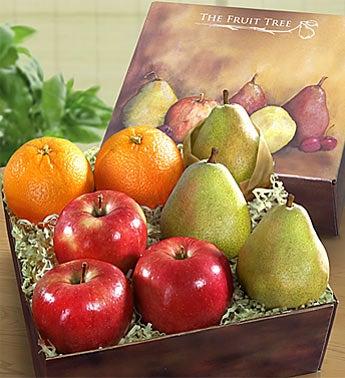 Arbor Harvest Fresh Fruit Sampler Box
