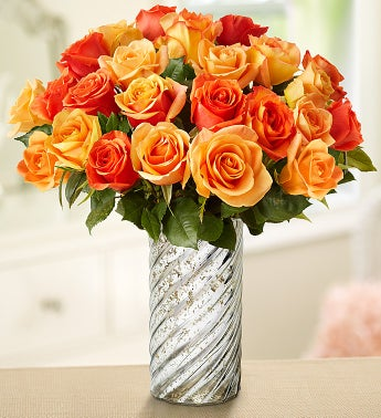 Sunset Roses, 12-24 Stems