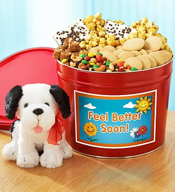 Get Well Sweets Tin & Cuddly Dog Plush