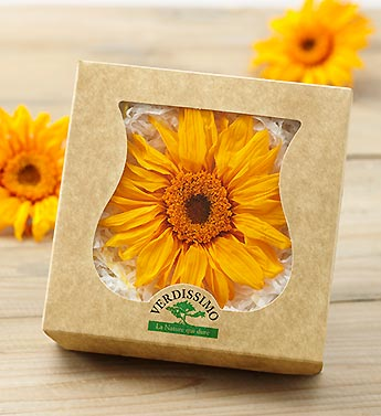Preserved Yellow Gerbera