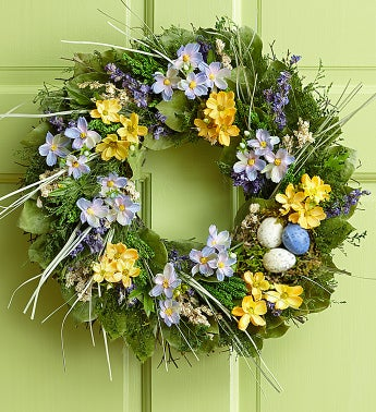 Preserved Spring Nest Wreath - 16""