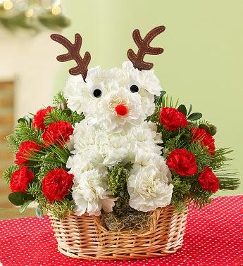 Santa's Best Reindeer?