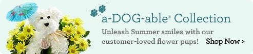 a-DOG-able® Collection